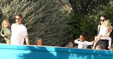 The Jolie Pitt Family Swim With The Dolphins Celeb Baby