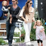 Angelina Jolie and Brad Pitt Hire Therapist For Son Pax