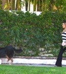 Pregnant Hilary Duff cuts some flowers with her faithful dog at her side then goes to her morning Pilates class in Toluca Lake, California on September 20, 2011.