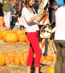 Supermodel Alessandra Ambrosio spends the day with her family at Mr. Bones Pumpkin Patch