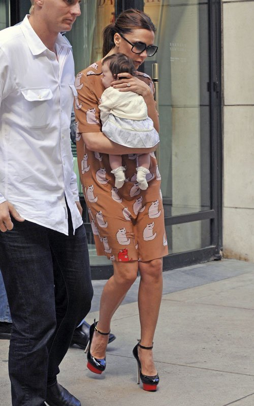 Victoria Beckham Cat Dress