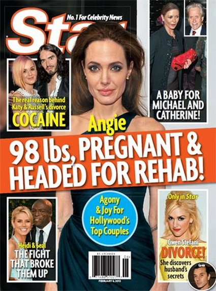 Angelina Jolie Is Pregnant, Weighs 98 Pounds, And Is Headed For Rehab?