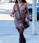 Alyson Hannigan Gets A Ticket While Pregnant