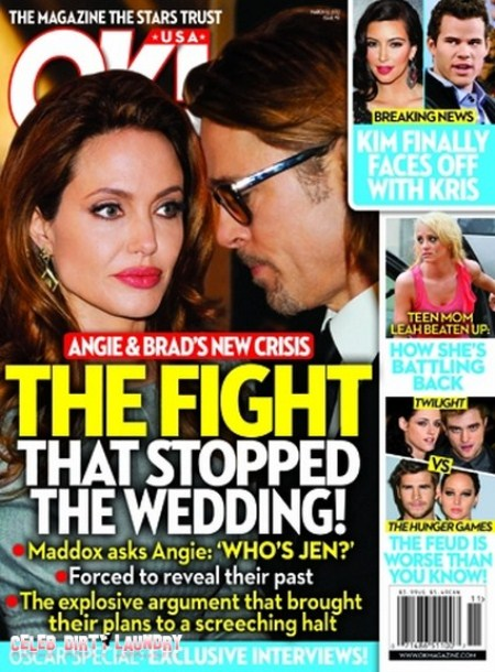 Angelina Jolie & Brad Pitt's Wedding Crisis:  The Wedding is on HOLD (Photo)