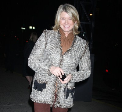 Martha Stewart Welcomes Another Surrogate Grandchild