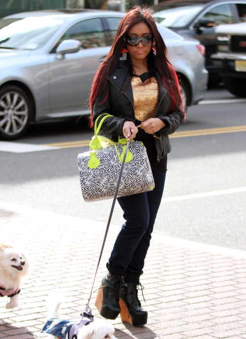 "Mom-to-be TV personality Nicole ""Snooki"" Polizzi and her reality co-star Jenni 'JWoww' Farley took a stroll through New Jersey with their little dogs on March 5, 2012"