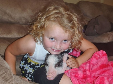 A Pet Pig is Honey Boo Boo's New Secret Weapon