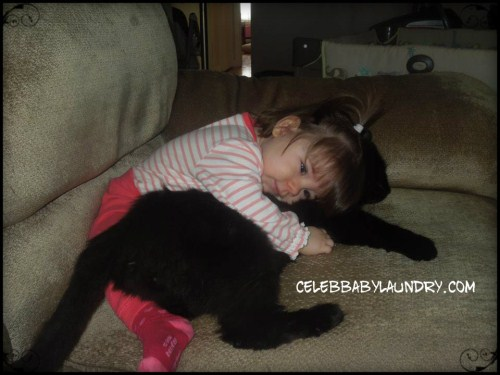 In Defense Of Cats: Yes, I have Three Cats & A Baby!