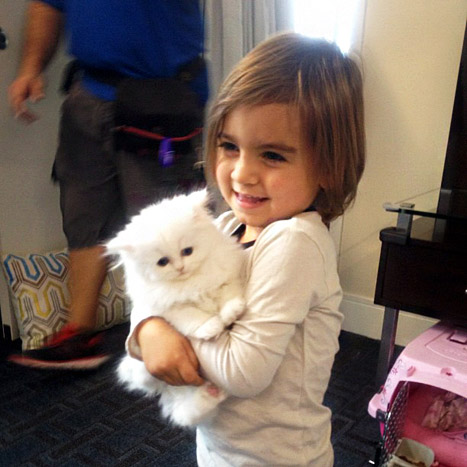 Mason Disick Loves Aunt Kim Kardashian's New Kitty