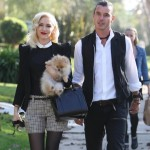 Report: Gwen Stefani is Pregnant