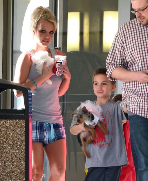 Britney Spears & Her Boys Take Their Pups To The Vet