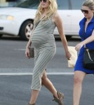 Exclusive... Pregnant Malin Akerman Shops For Groceries