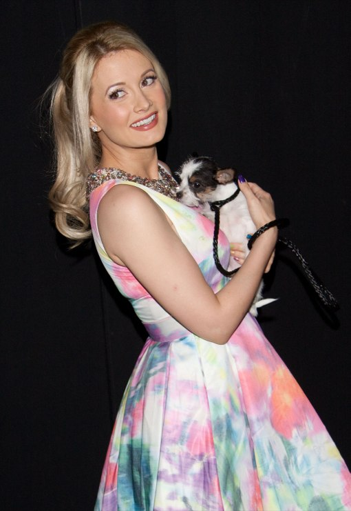 Holly Madison: My Dogs Are Still Adjusting to Rainbow