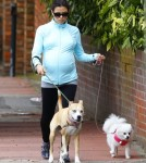Pregnant Jenna Dewan Walks Her Dogs