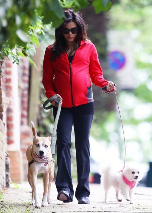 Jenna Dewan-Tatum: London Dog Stroller