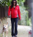 Pregnant Jenna Dewan Walks Her Dogs In London