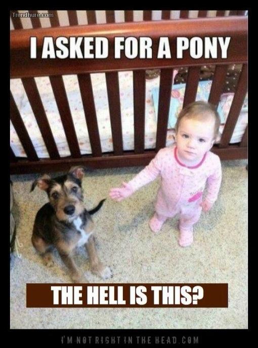 30 Best Baby Pooping Memes in 2020 – Child Insider |Lovely Baby Meme
