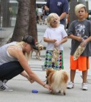 Kingston & Zuma Rossdale Check Out The Pets At The Farmers Market