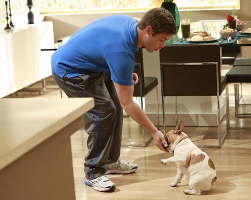 """Modern Family Recap For October 23rd, 2013: Season 5 Episode 6 """"The Help"""""""