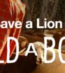 lion-big-cat-1_1000
