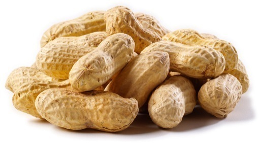 Peanuts Eaten in Pregnancy May Reduce Allergy Risks