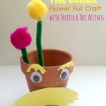 Dr. Seuss The Lorax Craft