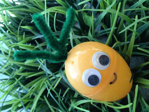 Easter Egg Critters Bunny Amp Carrot Easter Eggs Celeb