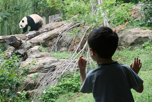 an exciting visit to the upland zoo Here are seven zoo alternatives that offer interesting and unique learning experiences that will get you close to animals, without the burden of a guilty conscience.