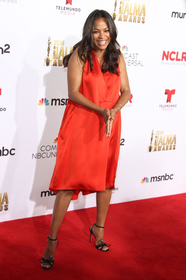 The 2014 NCLR ALMA Awards in LA