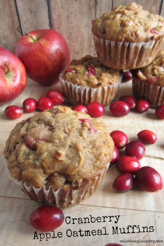 Cranberry Apple Oatmeal Muffins