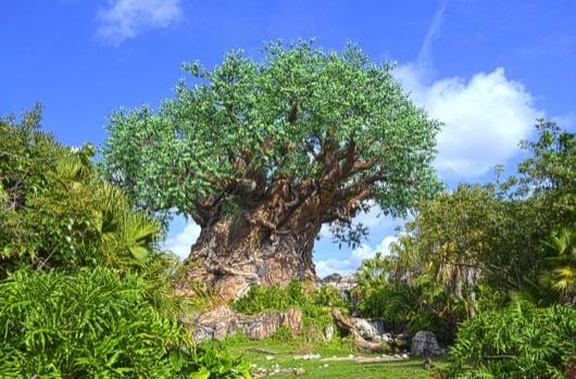 Enjoying Earth Day at Walt Disney World