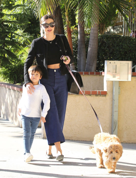 Exclusive... Miranda Kerr And Her Son Walk Their Dog