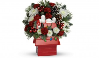 Send Holiday Cheer With Snoopy's Cookie Jar by Teleflora
