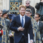 "Prince Harry GMA Interview: ""Princess Diana Would Want More Grandchildren"""
