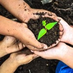 Earth Day Projects For Families
