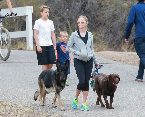 Reese Witherspoon Takes Tennessee And Deacon On A Family Hike