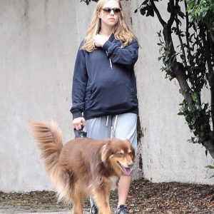 Pregnant Amanda Seyfried  Takes a Stroll With her Doggy