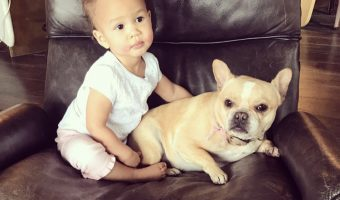 John Legend's Adorable Daughter Sits with their Dog