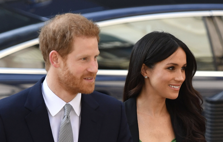 Prince Harry And Meghan Markle Will Not Have Custody Of Their Children